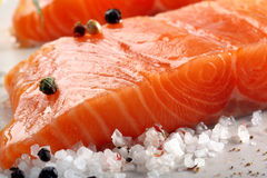 Raw salmon fillet with herbs and spices. Ready for baking on stone background Stock Photos