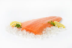 Raw salmon fillet. On ice Stock Images