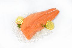 Raw salmon fillet. On ice Stock Photography