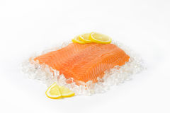 Raw salmon fillet. On ice Stock Photos