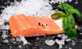 Raw salmon fillet and ingredients for cooking. stock photos