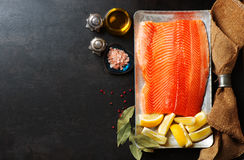 Raw salmon fillet and ingredients for cooking Royalty Free Stock Photos