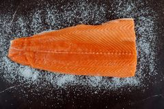 Raw salmon fillet, Salt, ingredients for dry cure marinade on dark background. Homemade preparation royalty free stock image