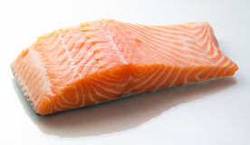 Raw salmon fillet Stock Images