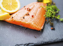 Raw salmon fillet with spices and lemon Royalty Free Stock Photography