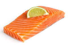 Raw salmon fillet on white. Lime slice Stock Photos