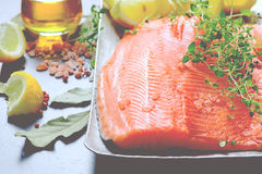 Raw salmon fillets Stock Images