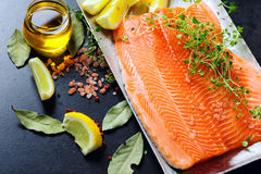 Raw salmon fillets Royalty Free Stock Photo