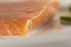 Raw salmon fish Stock Photo