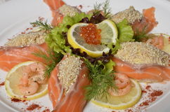 Raw salmon fish fillet. With fresh herbs and lemon Royalty Free Stock Photos
