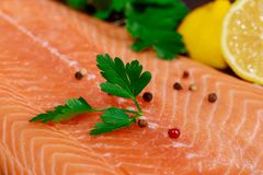 Raw salmon fish fillet on of lemon and fresh leaves. For preparing royalty free stock photos