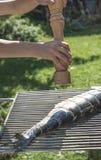 Raw salmon fish on grill Royalty Free Stock Photos