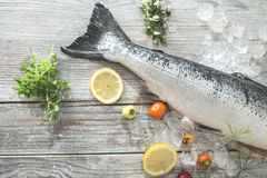 Raw salmon fish in ice and vegetables royalty free stock photos