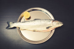 Raw salmon fish with lemon on metal tray Stock Photos