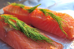 Raw salmon flesh Royalty Free Stock Photography