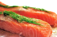 Raw salmon flesh Royalty Free Stock Photos