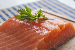 Raw salmon with herbs royalty free stock photography