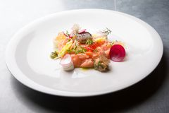 Raw salmon salad. With herbs and spices Royalty Free Stock Photos
