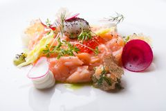 Raw salmon salad. With herbs and spices Royalty Free Stock Photo