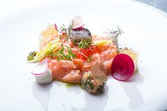 Raw salmon salad. With herbs and spices Stock Photography
