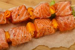 Raw salmon skewer. With spices ready for cooking Royalty Free Stock Images