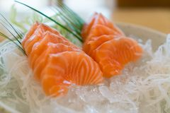 Raw salmon slice or salmon sashimi in Japanese style fresh serve. On ice in bowl Royalty Free Stock Photo