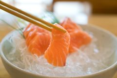 Raw salmon slice or salmon sashimi in Japanese style fresh serve. On ice in bowl Stock Photos