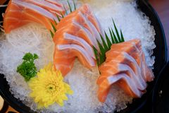 Raw salmon slice or salmon sashimi. In Japanese style fresh serve on ice in bowl Royalty Free Stock Image