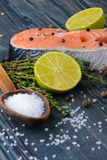 Raw salmon with spices and lime. Salt spoon Stock Photos