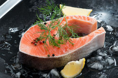 Raw salmon steak with dill and lemon on ice. Close-up Stock Photography
