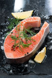 Raw salmon steak with dill and lemon on ice, vertical. Top view Royalty Free Stock Photo