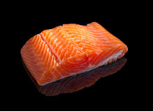 Raw salmon. Stock Photography