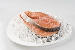 Raw salmon steak over ice Royalty Free Stock Photos
