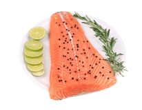 Raw salmon steak with rosemary. Royalty Free Stock Images