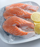 Raw salmon steaks Stock Photography