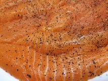 Raw Salmon Strips stock images