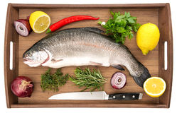 Raw salmon trout fish on wooden background Stock Images