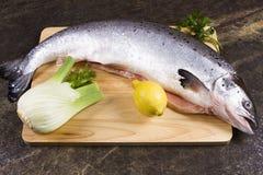Raw salmon Stock Image