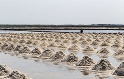 Raw salt or pile of salt from sea water in evaporation; ponds at. Phetchaburi province,Thailand stock photo