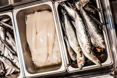 Raw Sardine and Calamare details. In a tray of a Portuguese restaurant Royalty Free Stock Images