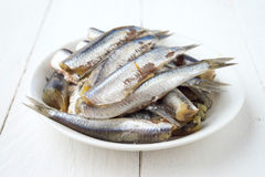 Raw sardines in dish on wood Stock Photos