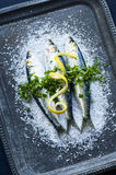 Raw Sardines Marinating on a Tray Stock Photo