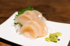 Raw scallop sashimi or hotate sashimi served with wasabi on dish, Japanese famous delicious raw seafood meal. Asian food. Japan traditional menu, healthy royalty free stock photos