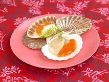 Raw scallops Royalty Free Stock Images