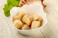 Raw scallops heap. In the bowl ready for cooking Stock Photo