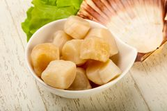 Raw scallops heap. In the bowl ready for cooking Stock Image