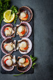 Raw scallops with lemon, cilantro on slate plate, white wine. Seafood. Shellfish. Raw scallops with lemon, cilantro and white wine on black stone slate plate Stock Images
