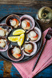 Raw scallops with lemon, cilantro on slate plate, white wine. Seafood. Shellfish. Raw scallops with lemon, cilantro and white wine on black stone slate plate Stock Photography