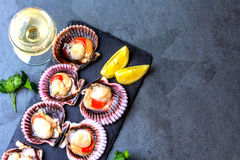 Raw scallops with lemon, cilantro on slate plate, white wine. Seafood. Shellfish. Raw scallops with lemon, cilantro and white wine on black stone slate plate Stock Photos