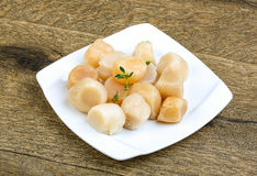 Raw scallops. With thyme - ready for cooking Stock Photography